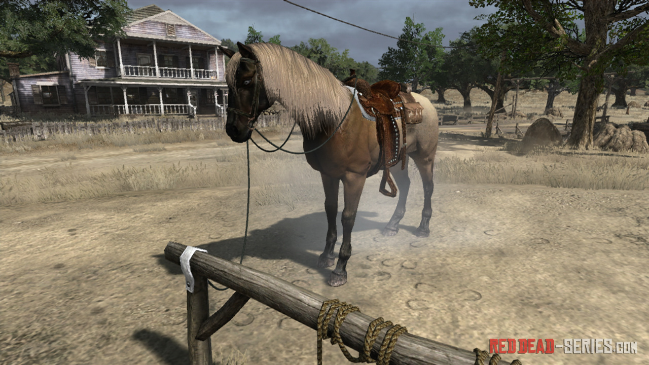 how to buy a horse red dead